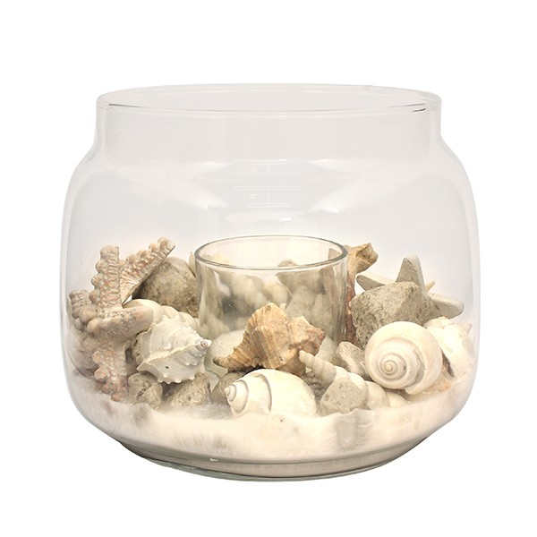 SHELL + DRY ARRANGEMENT IN GLASS -19X15.5 CM - BLD / NAT
